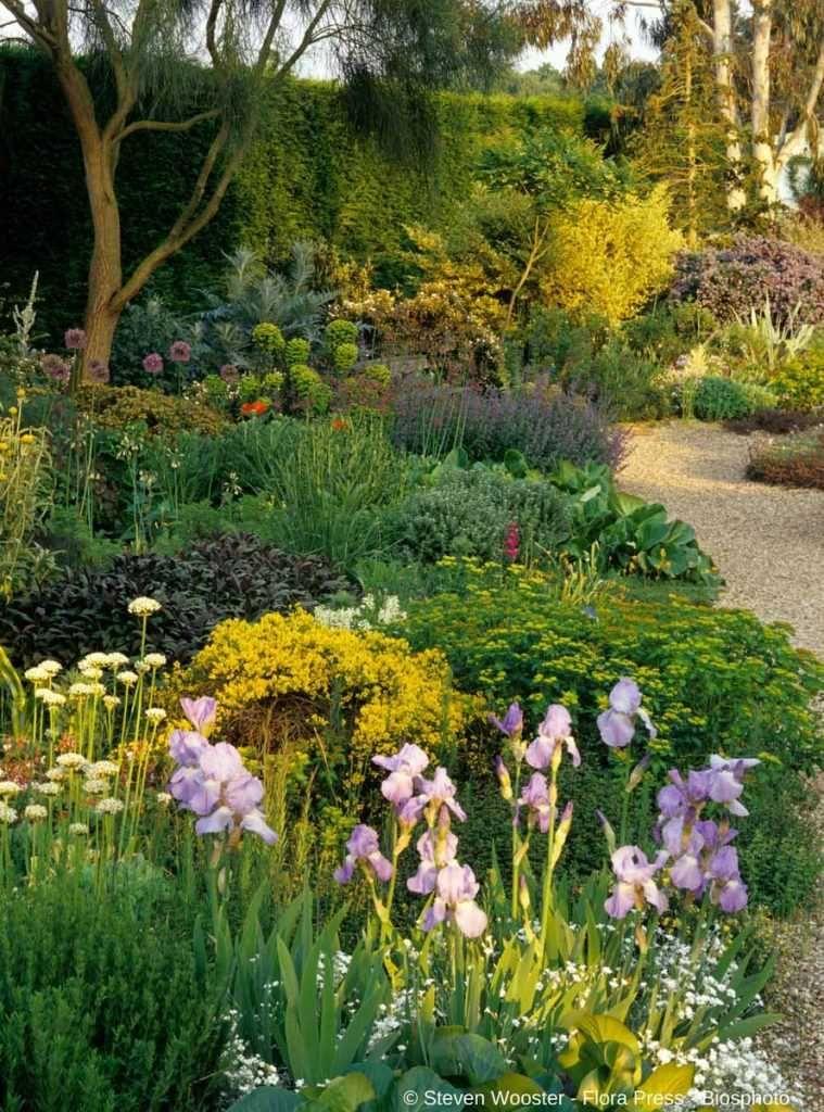 Comment cr er un beau massif de vivaces massif fleurs - Comment faire un beau jardin potager ...