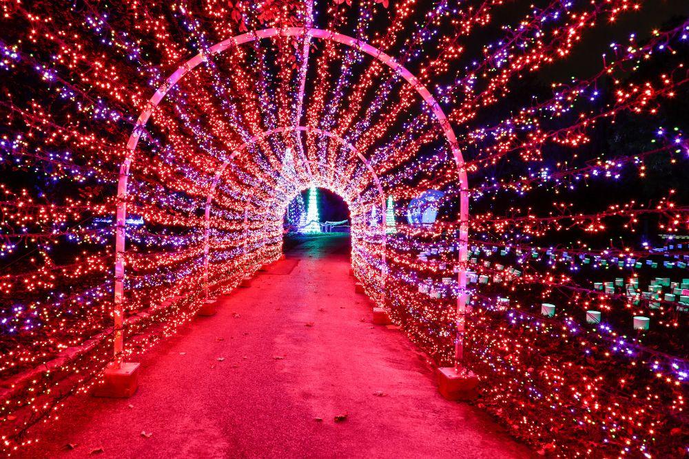 553569bdbf071b79c898b5733b311ba3 - Lights At Botanical Gardens St Louis
