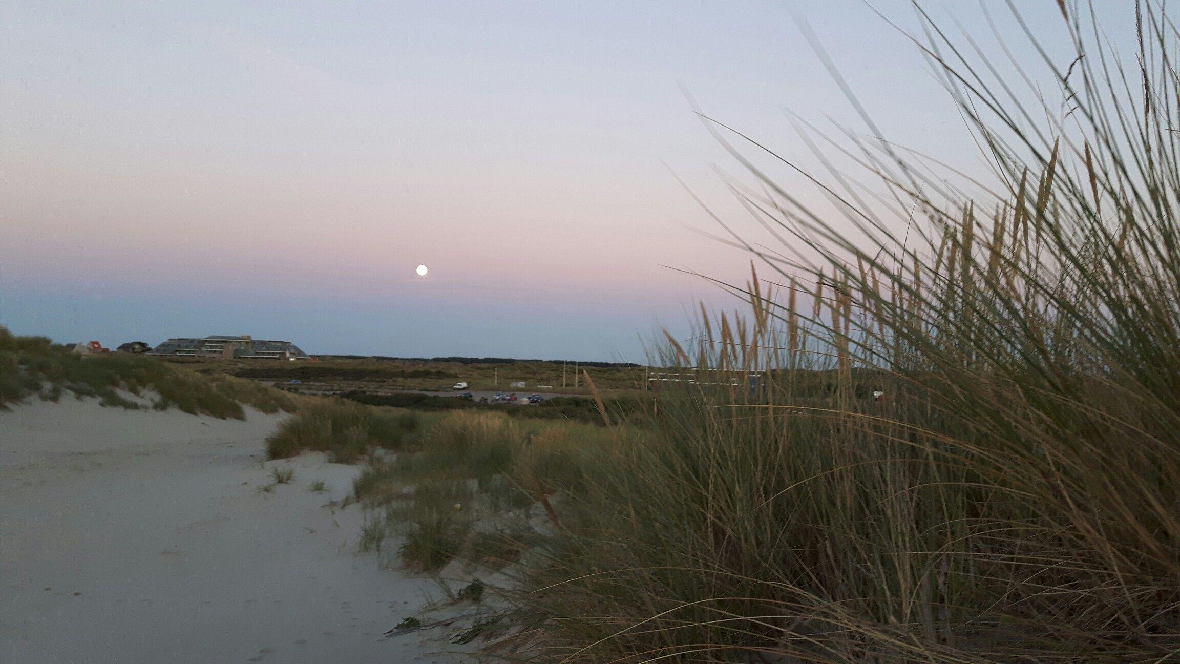 Volle maan boven wadkant