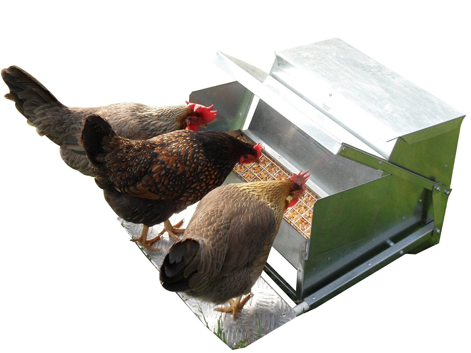 llc poultry pro chicks sale manna organic for feeder layer front products pellets