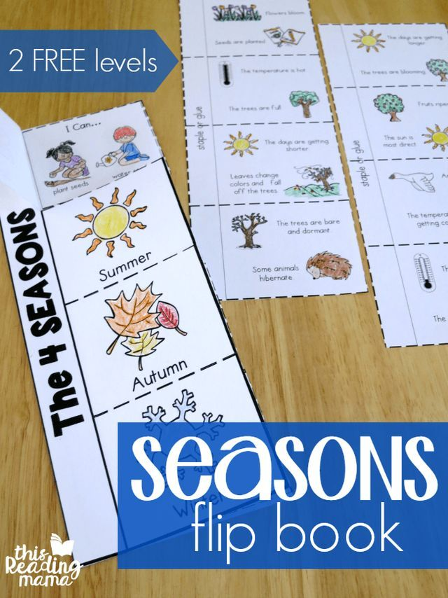 4 Seasons Flip Book {2 FREE Levels} (This Reading Mama ...