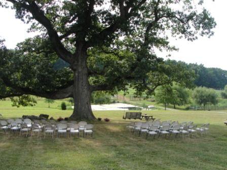 Valley Crest Tree Nursery Availability Thenurseries