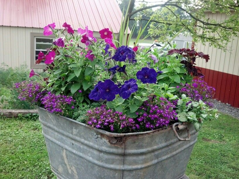 Metal Was Tub Flower Garden