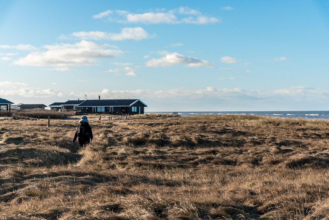 Dänemark Ferienhaus mit Meerblick an der Nordsee (mit