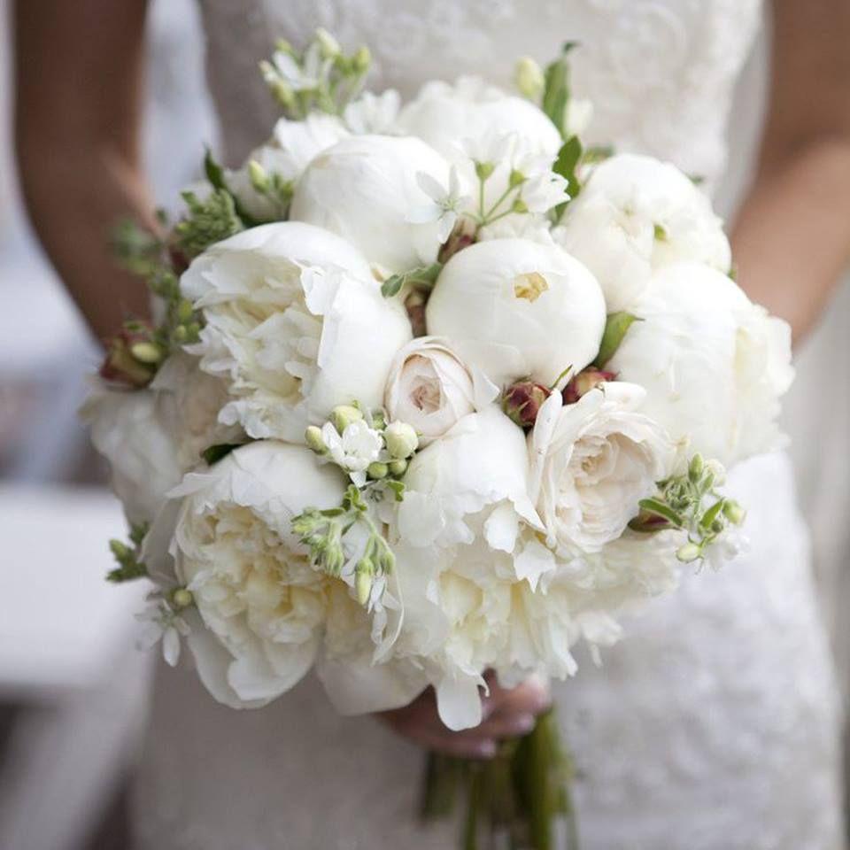 Bouquet Sposa Peonie.Bouquet Di Novembre Peonie Peonie Bouquet Da Sposa Nozze