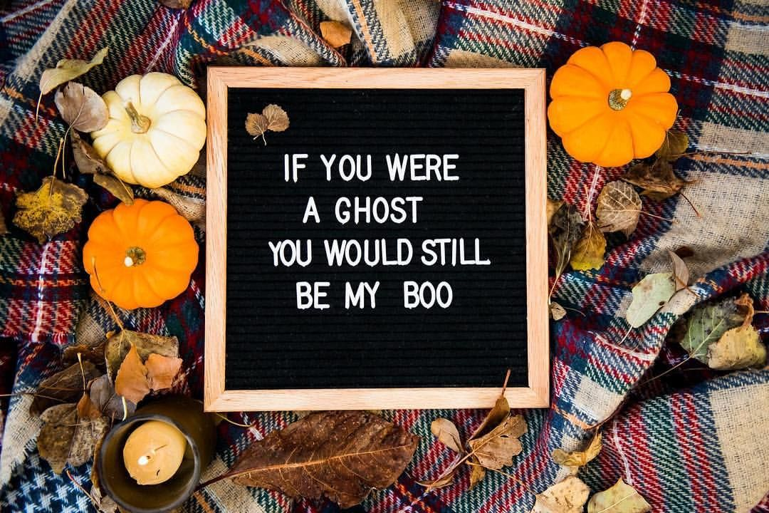 Halloween Themed Letterboards, Halloween Quotes, Fall