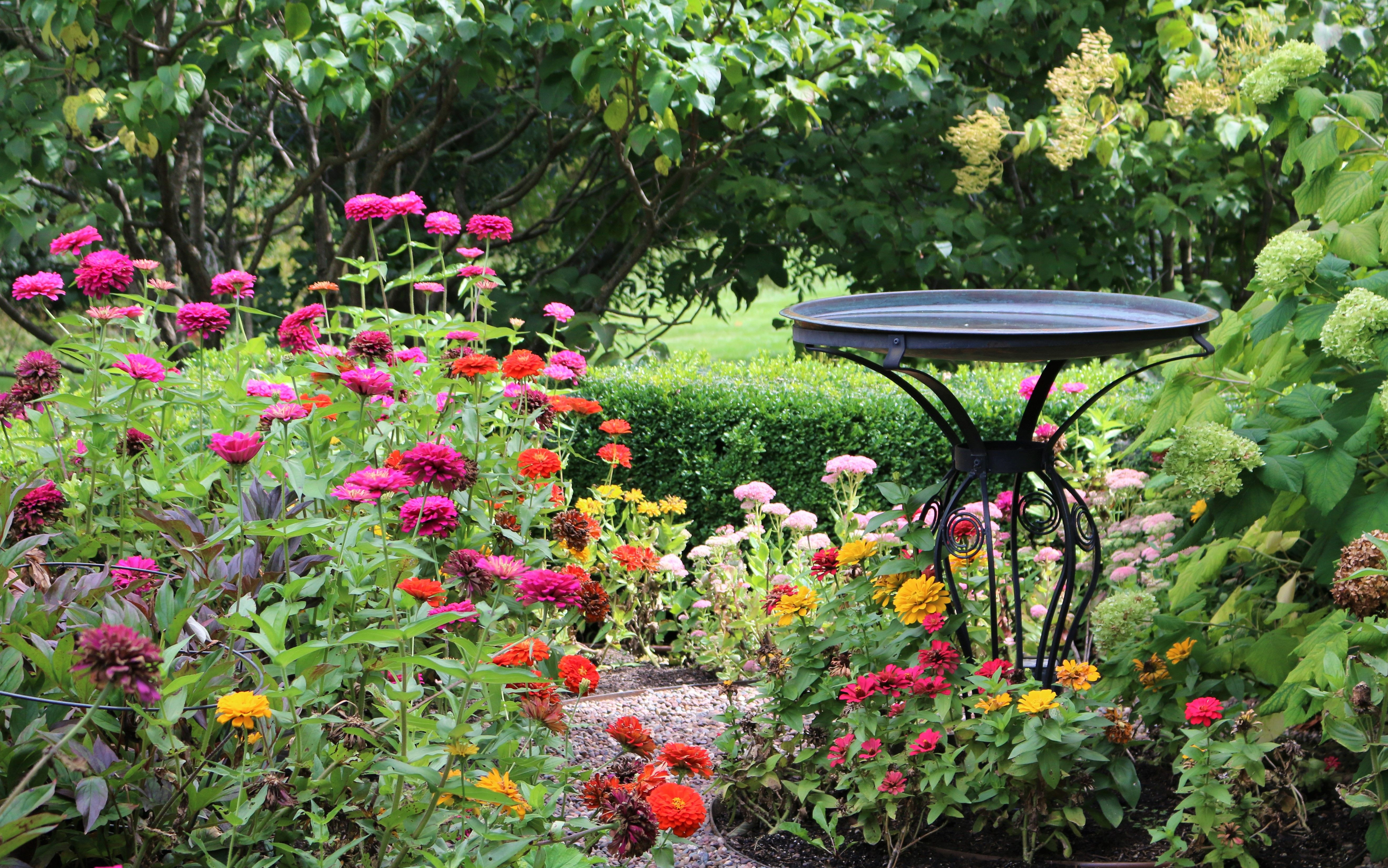 Design Your Landscape To Include The Jewel Tones Of Autumn For Extended Garden Interest Photo By Rstarovic Modern Garden Design Garden Design Modern Garden