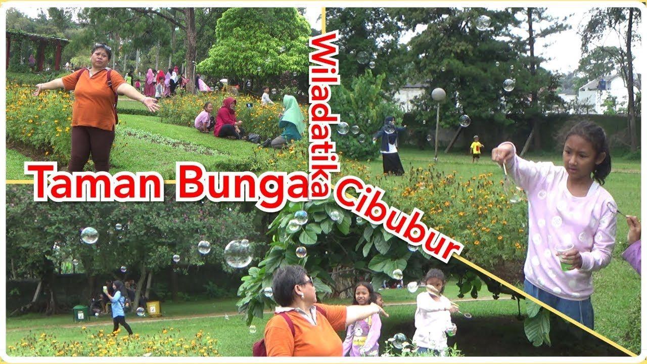 Taman Bunga Wiladatika Cibubur Taman Bunga Taman Bunga