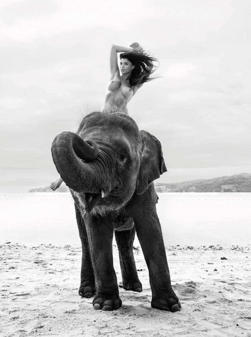 Nude and elephant in africa photos 965