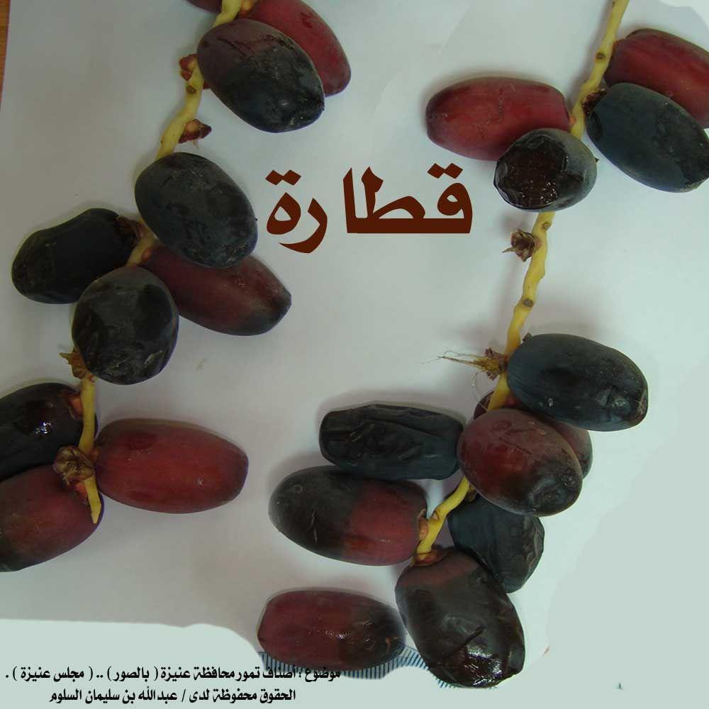 انواع التمور بالصور Fruit Grapes Date Palm