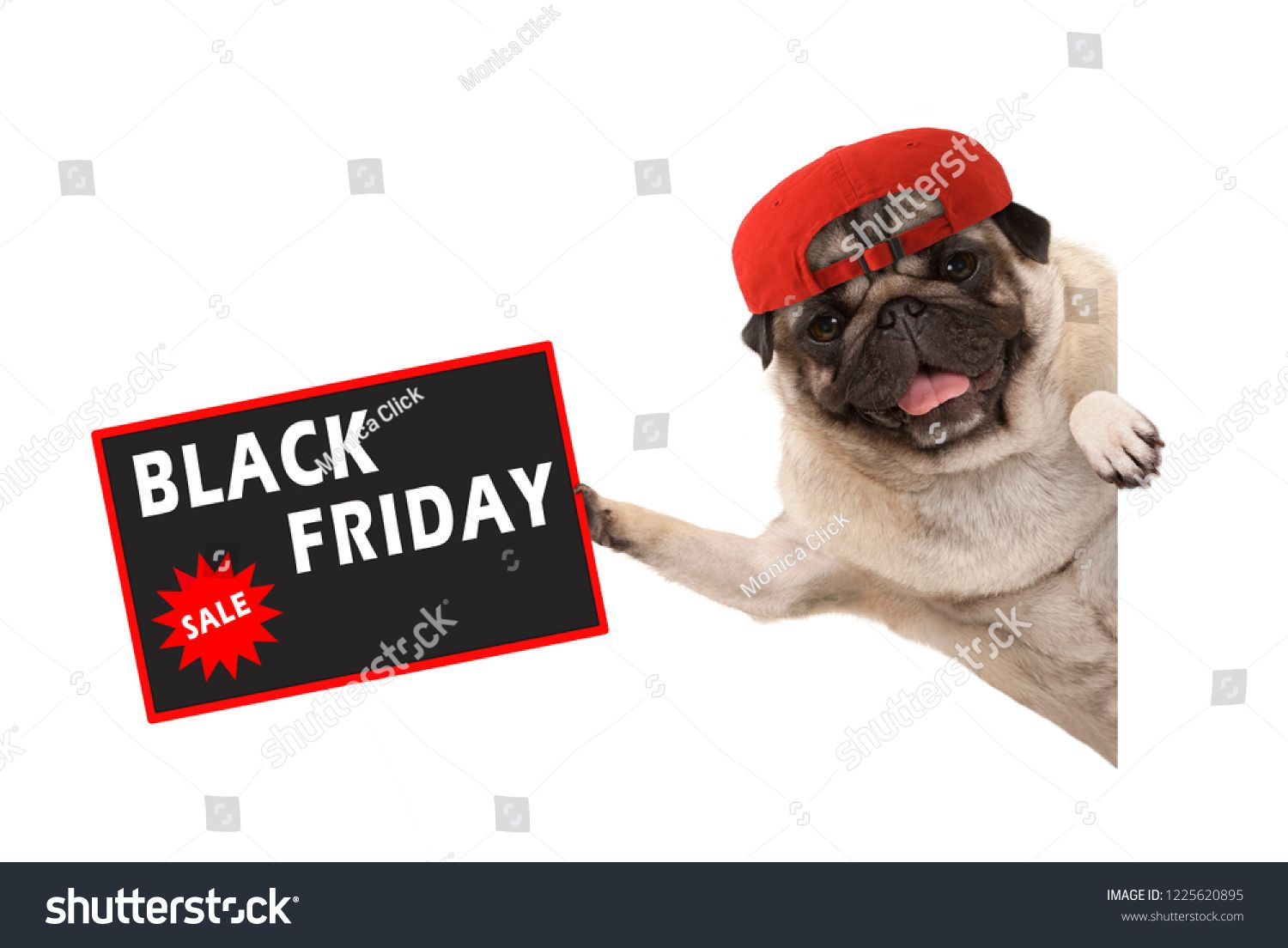 Frolic Pug Puppy Dog With Red Cap Holding Up Sale Sign With Text