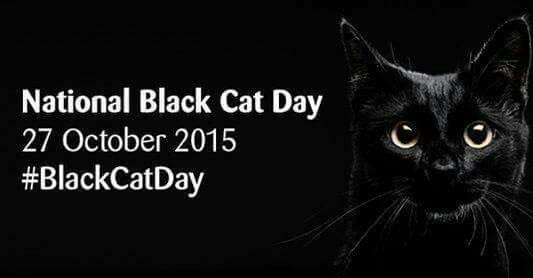 National Black Cat Day Oct 27th National Black Cat Day Black Cat Day Black Cat