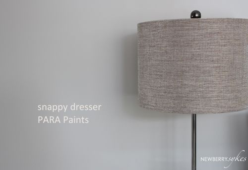 Para paints snappy dresser