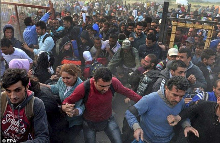 By BI:Exactly 51,395 Muslim illegal aliens – 3,600 per day – from North Africa and the Middle East, most of whom are not even from Syria or war-torn countries, have been swarming into Germany in the first two weeks of 2016 alone —figures so high that large numbers of Chancellor Angela Merkel's own party have …