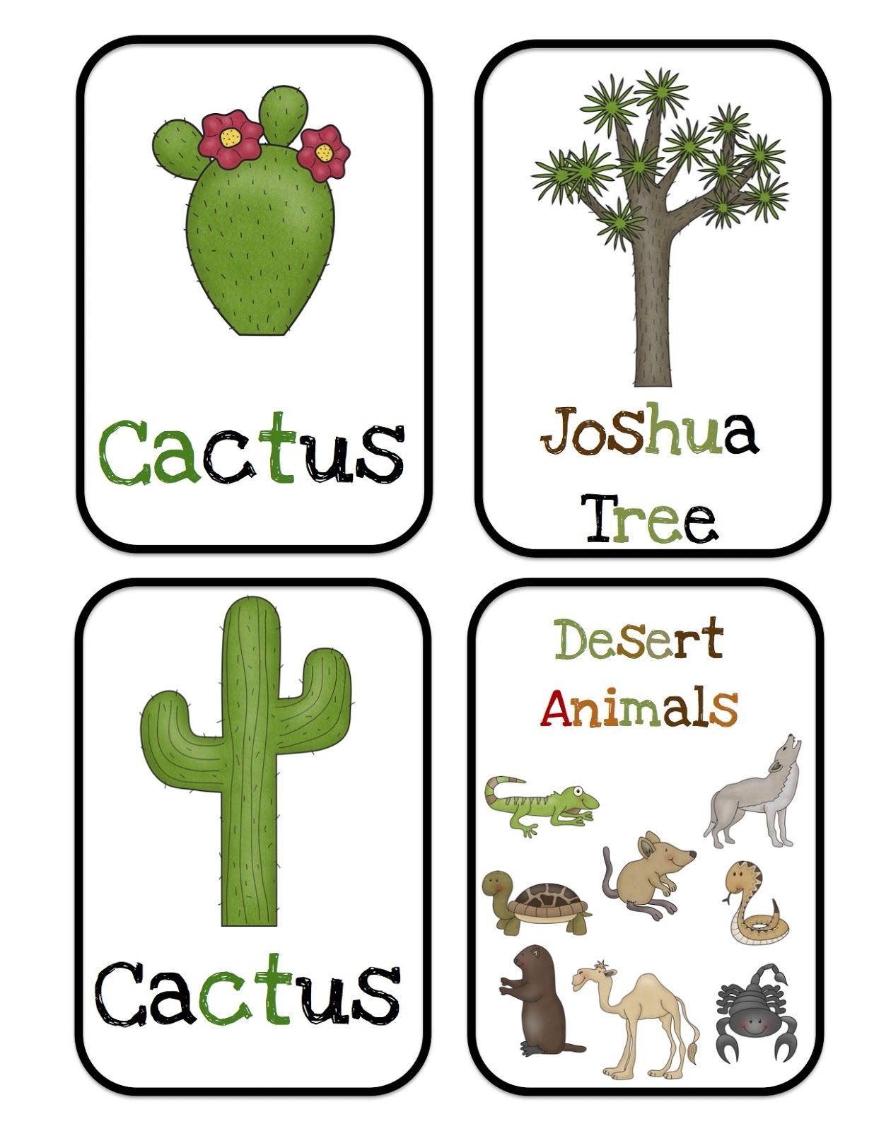 Desert Animals Bulletin Board Cards Preschool Printables