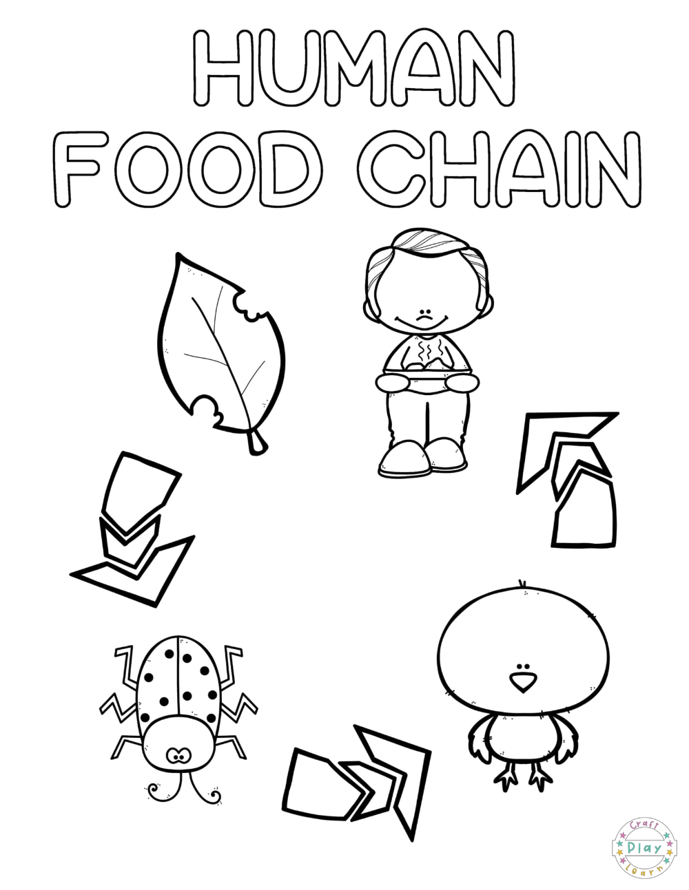 Preschool Coloring Pages Based On The Theme The Human Food Chain If You Re L Preschool Coloring Pages Food Chain Food Chain Worksheet [ 1293 x 1000 Pixel ]