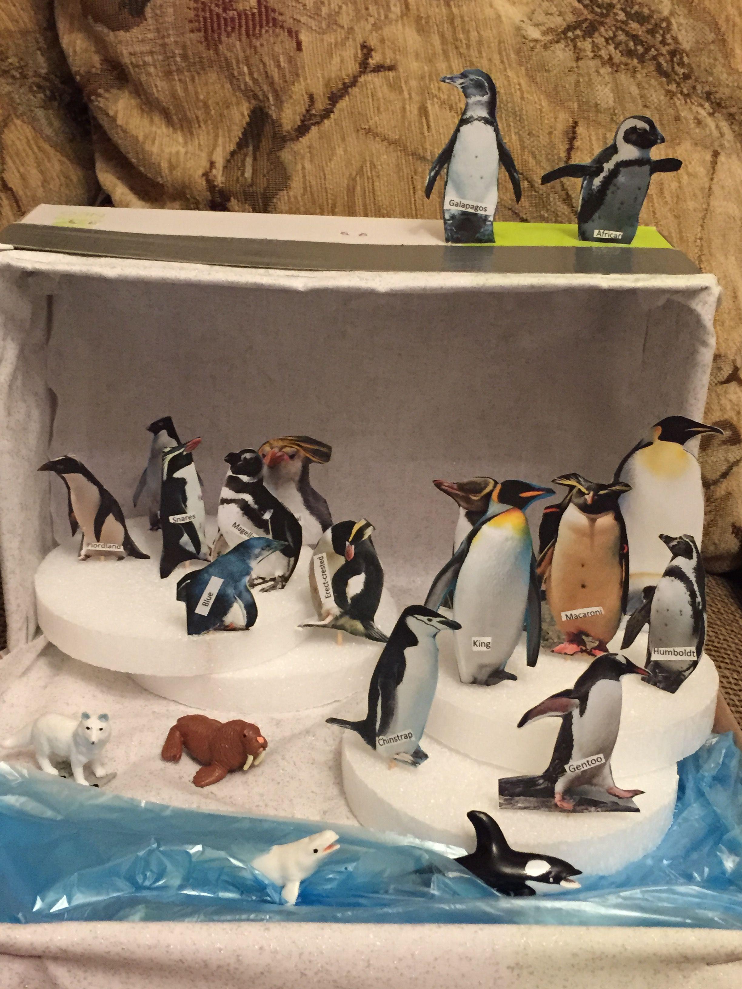 Penguin Diorama