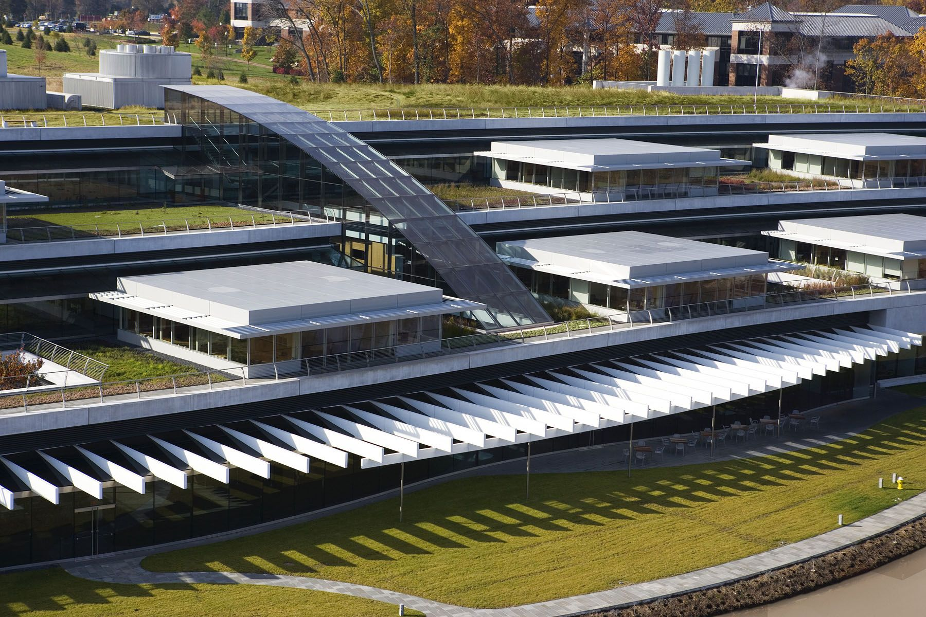 Howard Hughes Medical Institute – Janelia Farm Campus | Rafael Viñoly Architects | Green roof detail. Photos: Jeff Goldberg / Esto