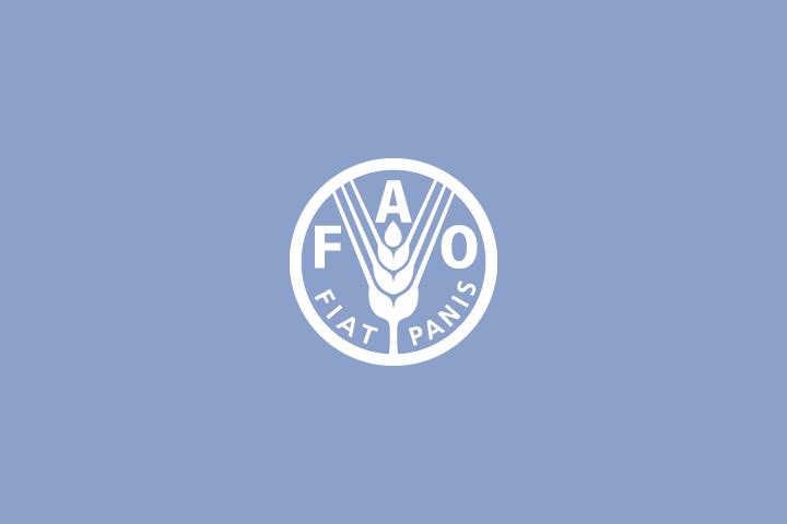 Fao Food And Agriculture Organization Of The United Nations Es El Organismo Especializado De La Onu Que Dirige Las Asociacion Civil Actividades Folletos