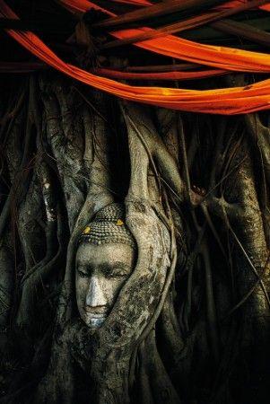 buddha by hasachai boon-nuang