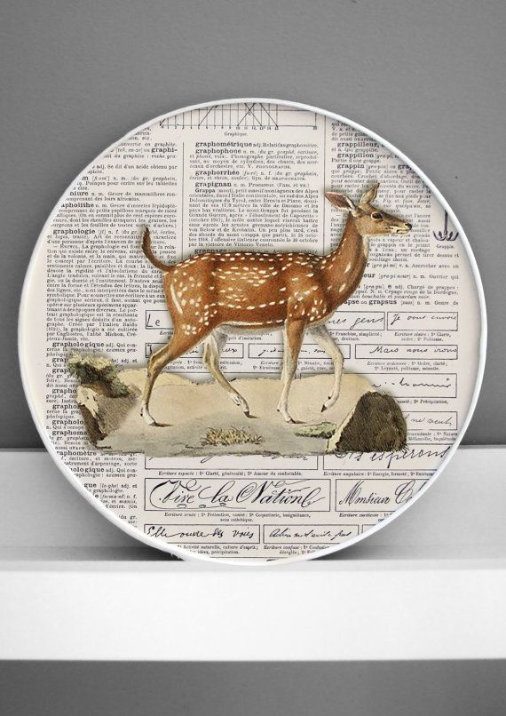 deer 3D natural history print framed curiosity by DigitalArtParis, $24.00