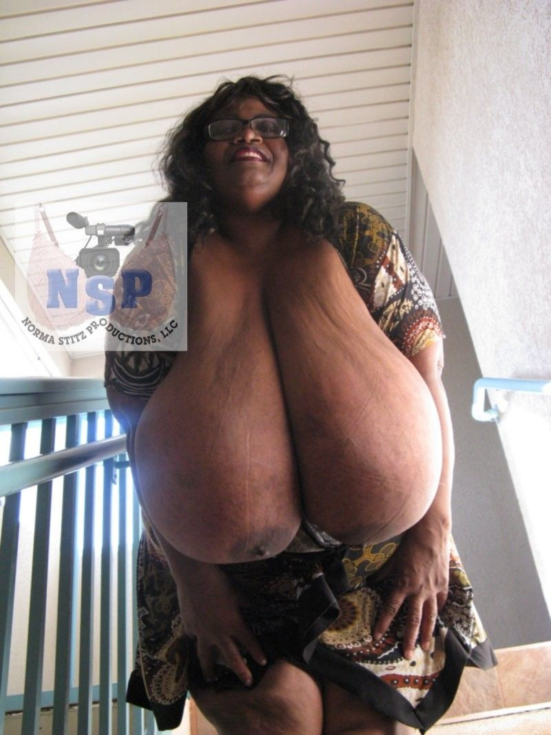 norma stitz blow job gallery