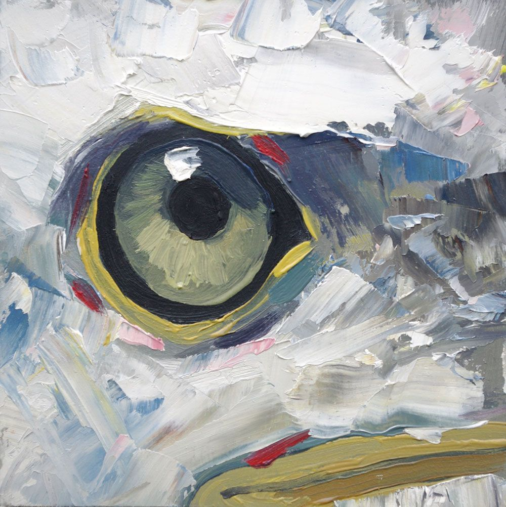 Creative Hallwayideas: The Eagle Will Lineberger Eskridge