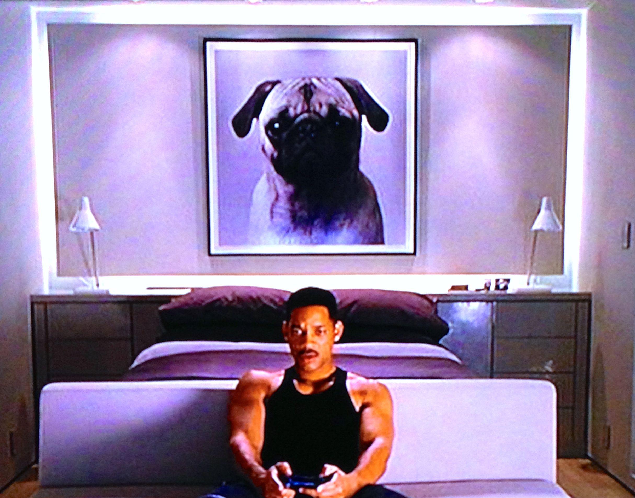 Frank the pug found framed in Men in Black 3 | Frank the pug, Pug love, Pugs