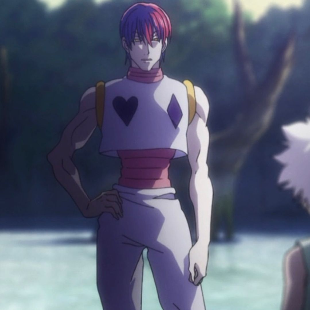 Pin On Hisoka