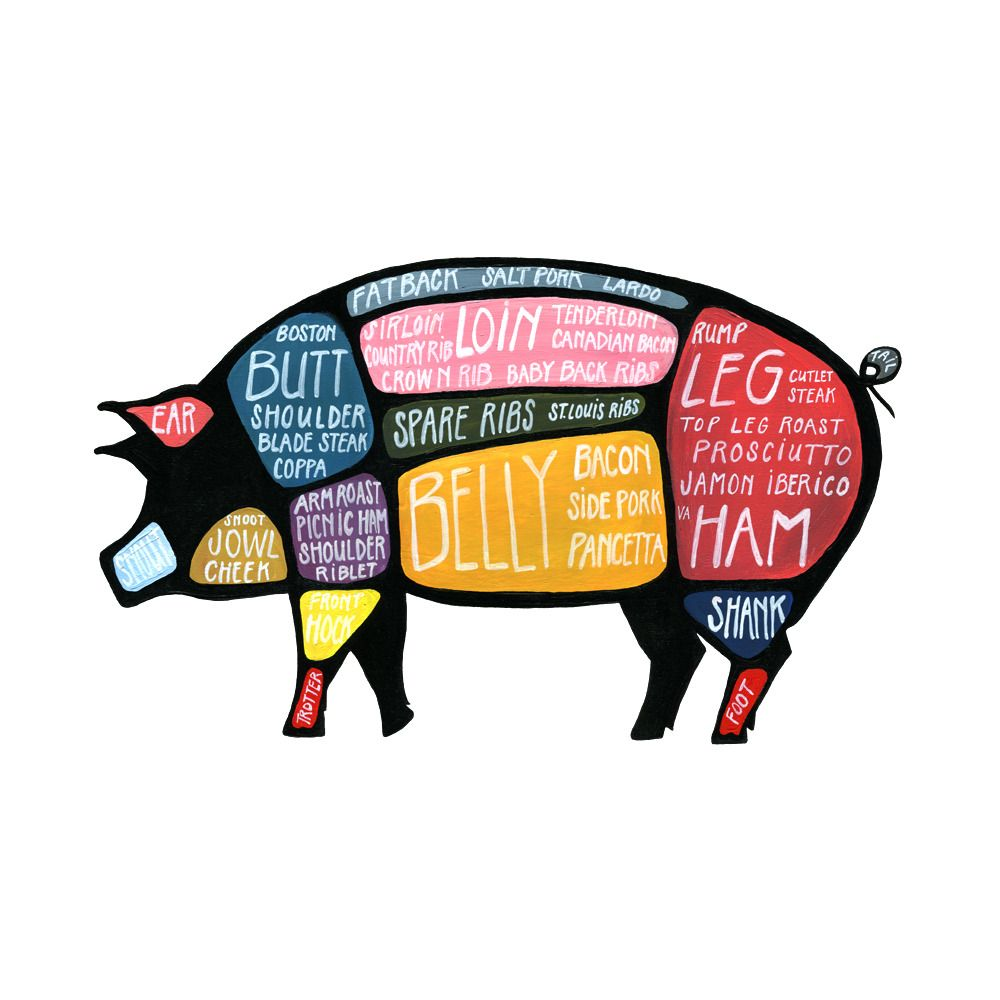 Set Of Two Pig And Cow Butchery Diagrams Drywell Art Butcher Diagram Pork Butchery