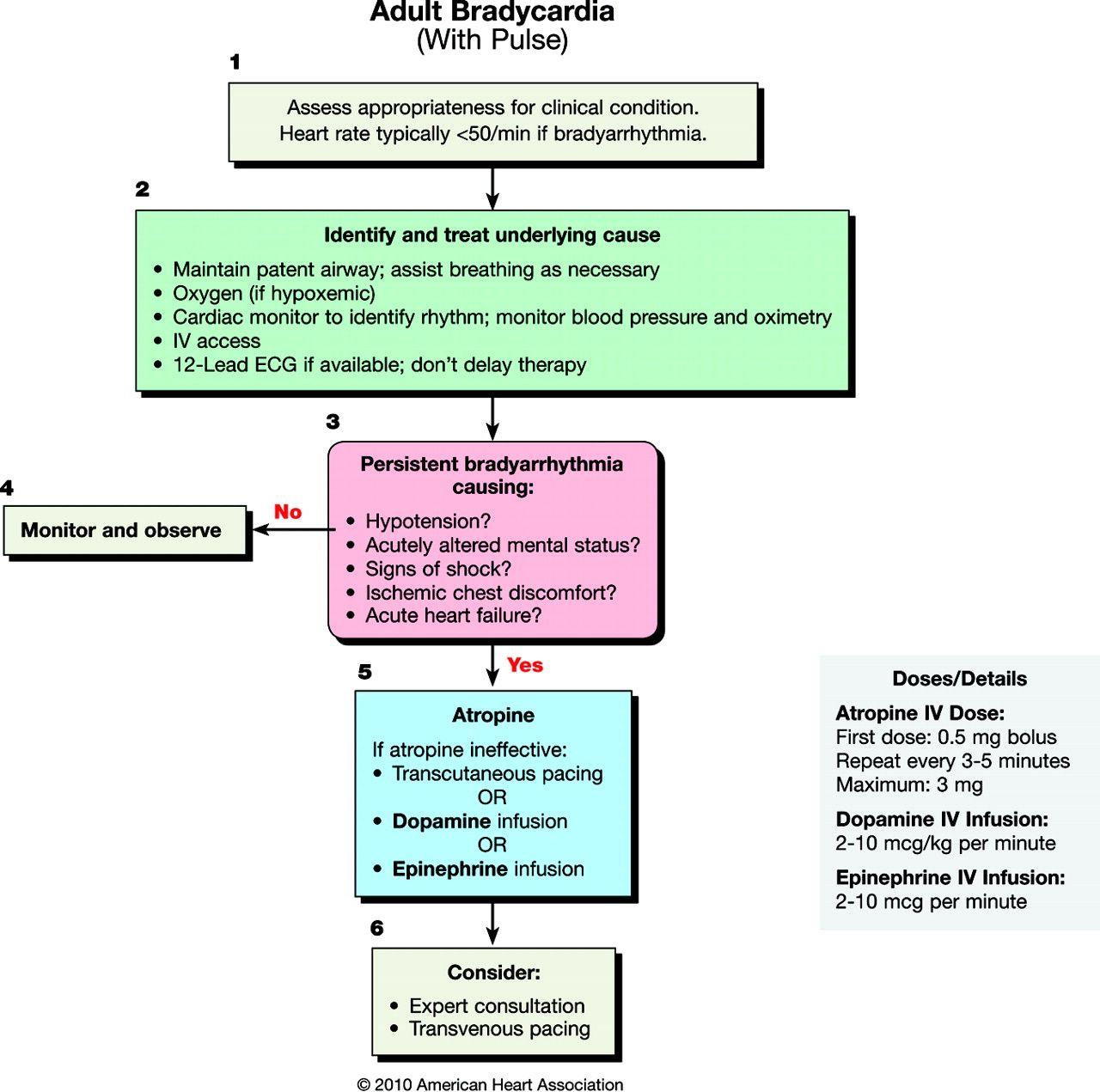 F3.large.jpg (1280×1271) Acls algorithm, Cardiac nursing