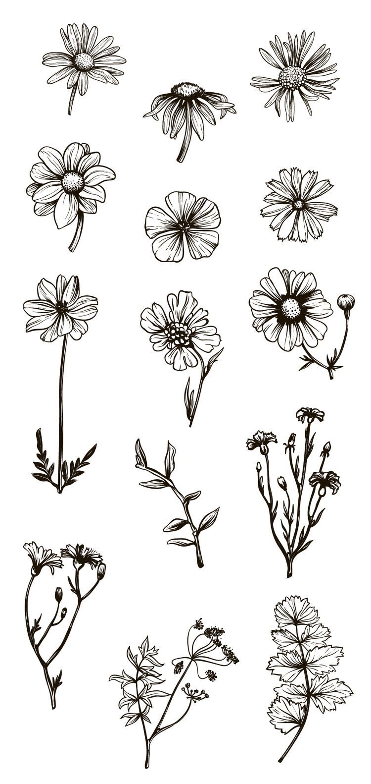 Small Drawings: 25 Beautiful Flower Drawing Ideas & Inspiration
