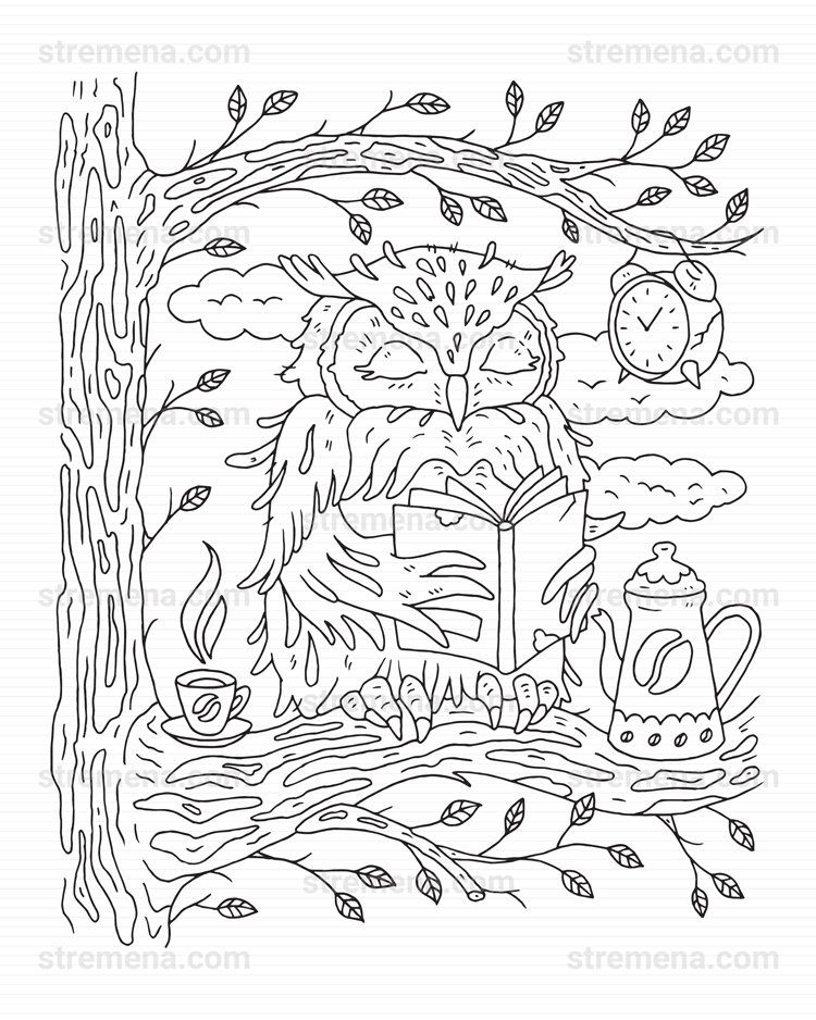 Coloring Book PDF The Secret Life of Forest Animals