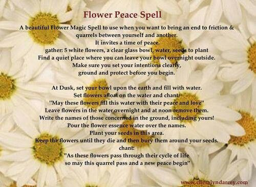 Peace spell