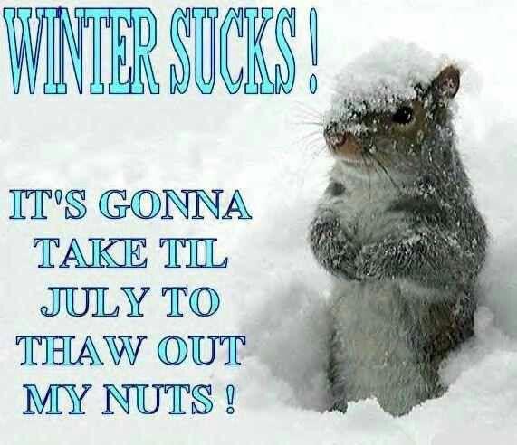 Stupid winter