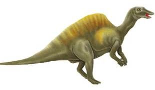 dinosaur images free - Yahoo Image Search Results