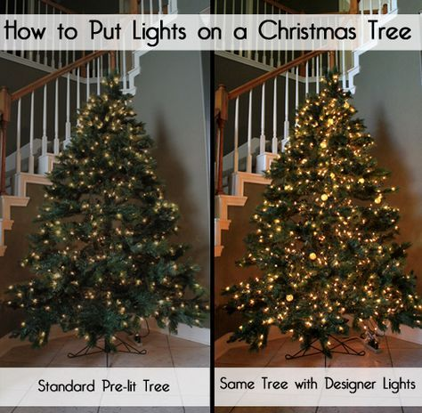How to Put Christmas Lights on a Christmas Tree for a designer look, extra  sparkle, and extra flair. Your tree should be glowing! - Designer Secrets For How To Put Lights On A Christmas Tree