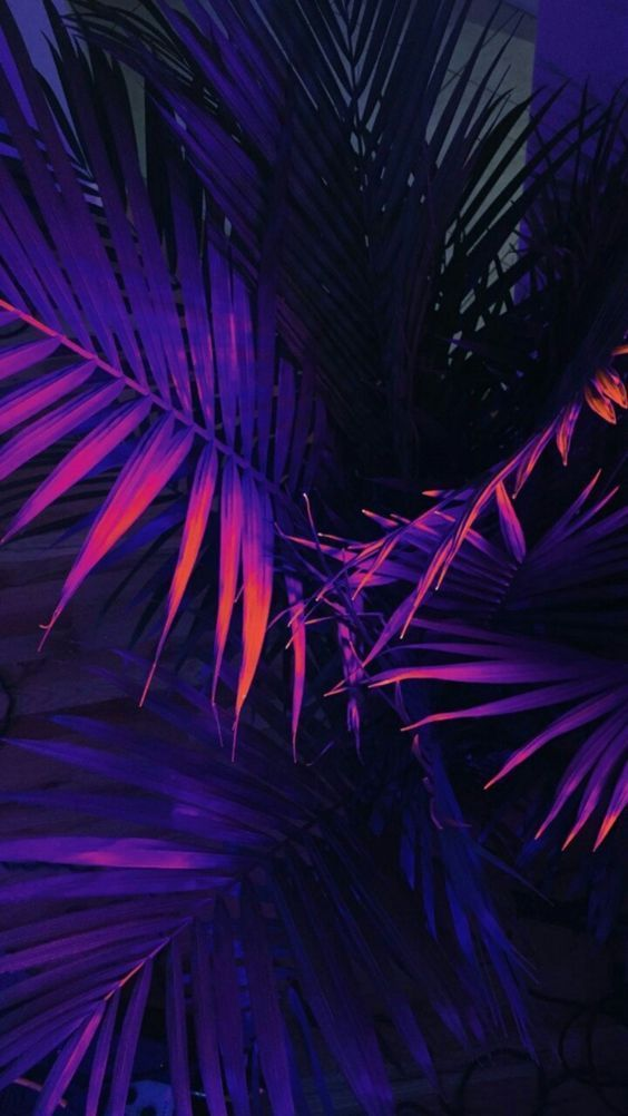Aesthetic iPhone wallpaper background for iPhone purple ...