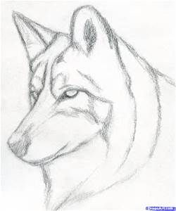 how to draw a dog face super easy yahoo search results yahoo