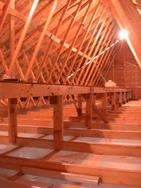 Spray Foam Insulation In Ceiling Remodeling Forum Gardenweb Remodel Home Projects Attic Storage
