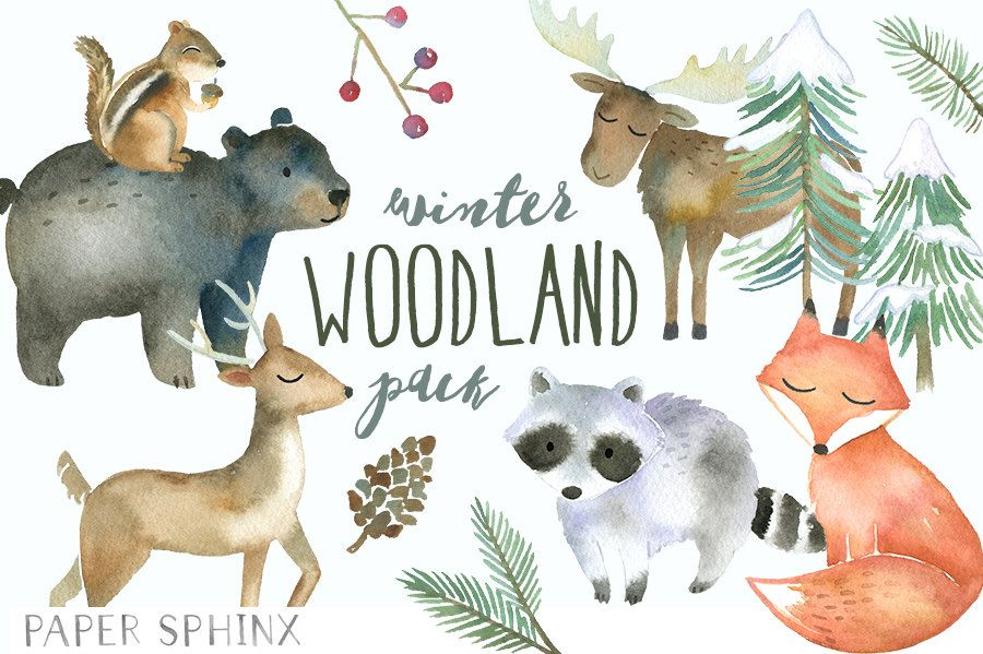 Winter Woodland Animals Clipart Watercolor Forest