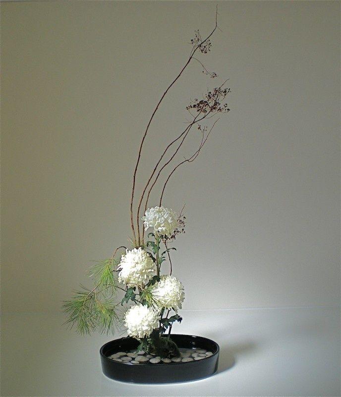 Цветы японские хризантемы