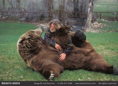 Grizzly Adams  | Animals | Bart the bear, Bear, Facts about