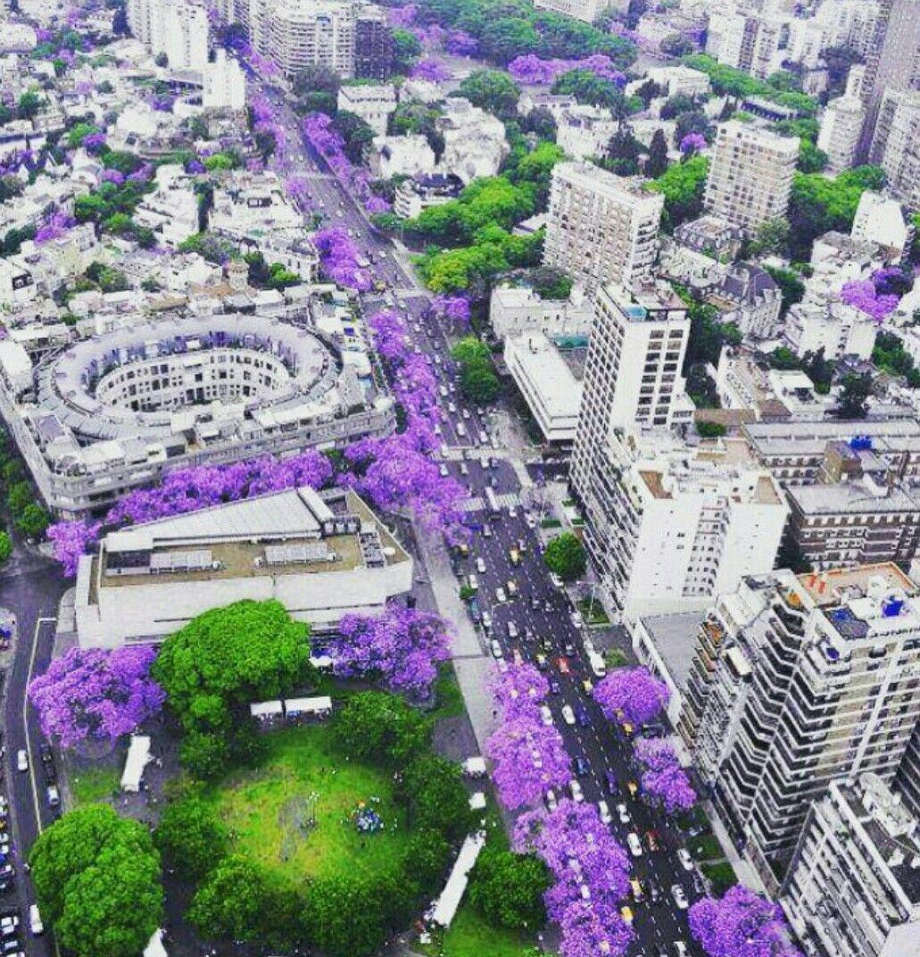 Buenos Aires, Argentina primavera que linda ciudad!