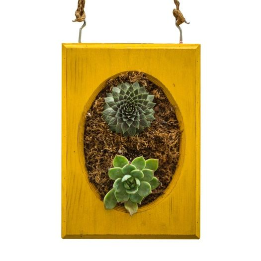Local Artists Used Reclaimed Wood To Craft These Clever Hanging Planters.  Living Succulent Wall Art