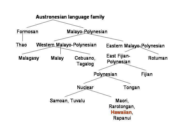 proto-hamitic language history or grammar pdf download