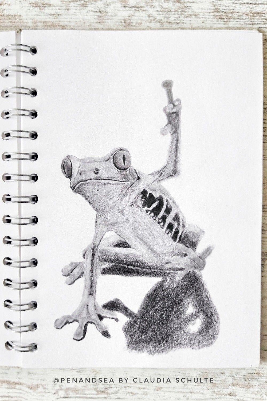 Bleistiftzeichnung Frosch in 2020 Frosch zeichnen