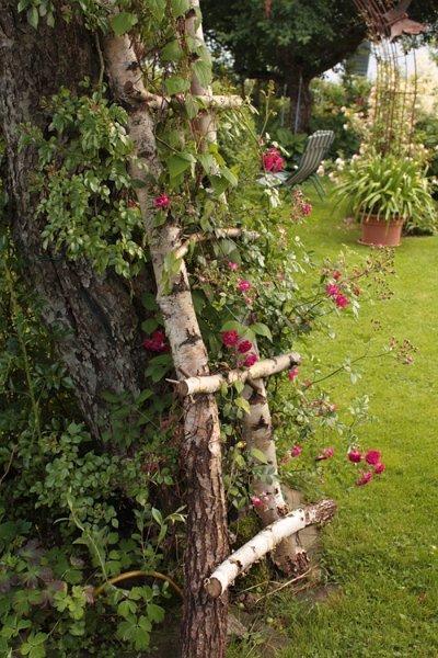 Pin Auf A Small Garden