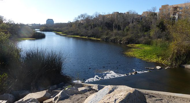 Beautiful walks along the river by Escala in Mission Valley, San Diego, CA