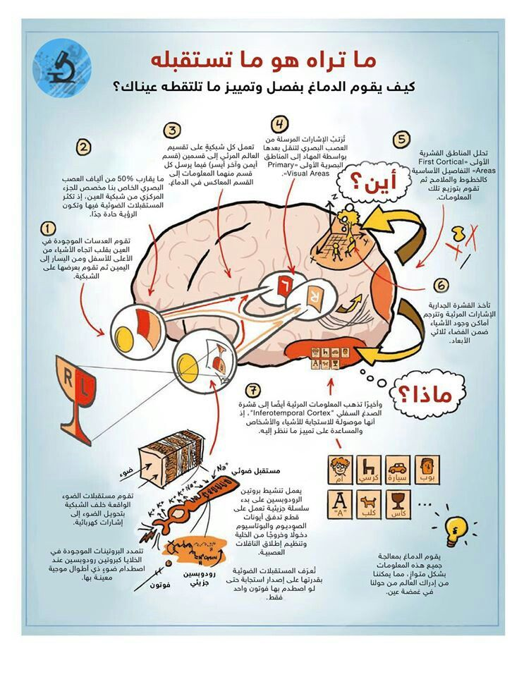 Pin By Fatima Marzouk On معلومات عامة Scientific American Self Development Development